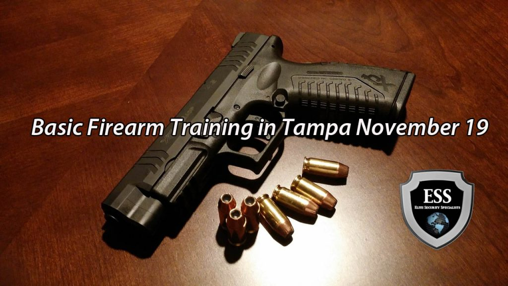 Basic Firearm Training in Tampa November 19