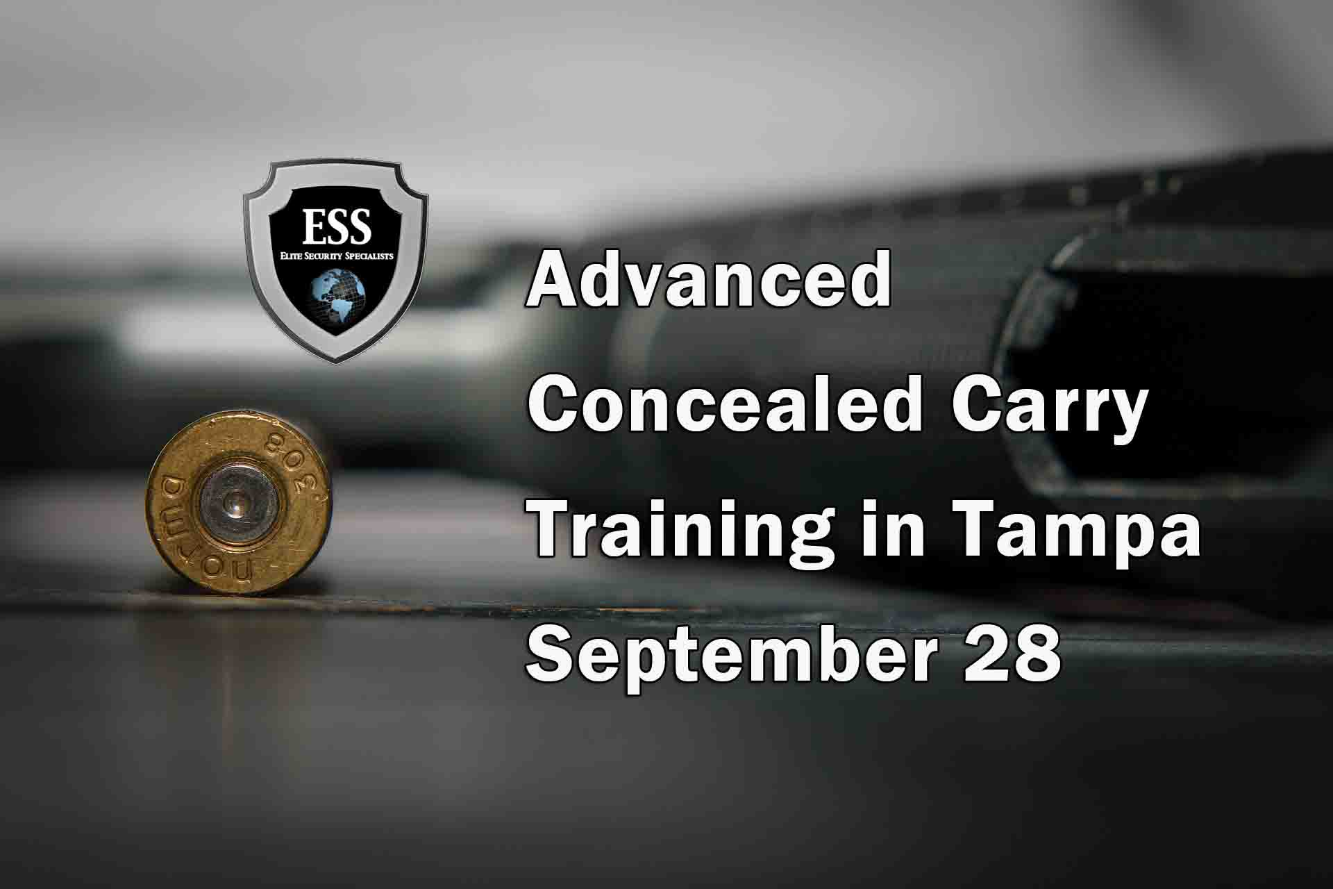 Advanced Concealed Carry Course in Tampa